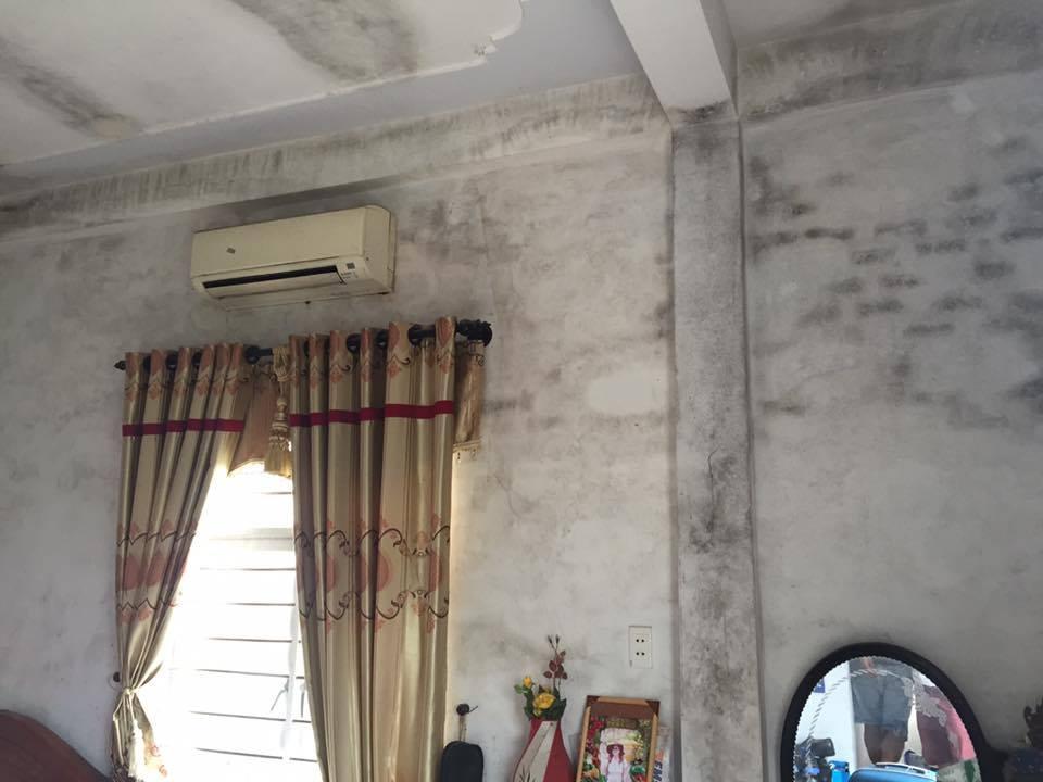 Mẹo xử lý nấm mốc tường tại nhà